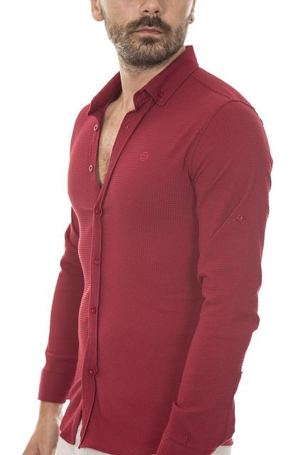 Camisa de mezclilla bordados de algodón de manga corta